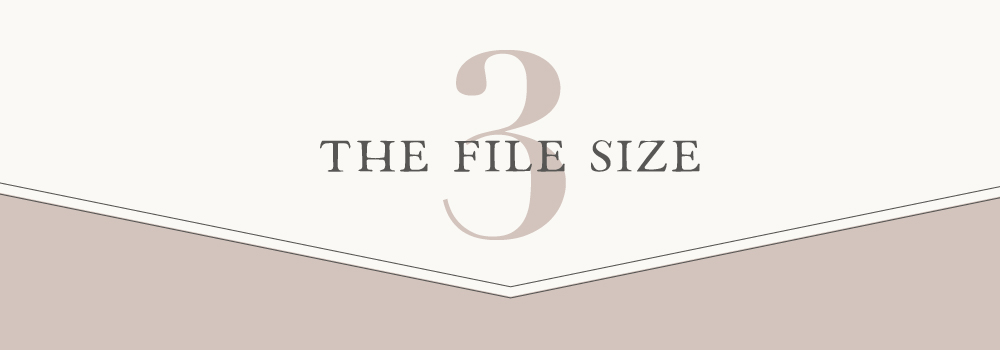 the file size
